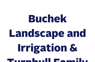 Buchek Landscape